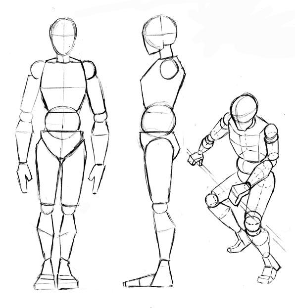 Clase 02. El cuerpo y sus proporciones - MarmotFish Studio