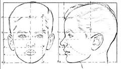 Но теперь лицо является относительно более узким, пребывая хорошо в квадрате в переднем представлении.
